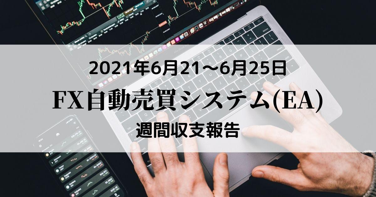 【FX自動売買(EA)週間収支報告】6月21日~6月25日+33,846円